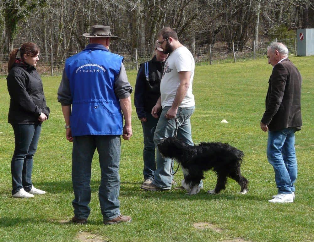 CSAU Club d'éducation canine de SOURZAC (24) Dordogne