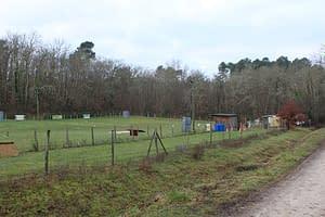 Le Club Club d'éducation canine de SOURZAC (24) Dordogne